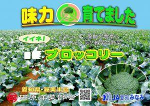 ≪即売会≫ 田原市の洋菜フェア!