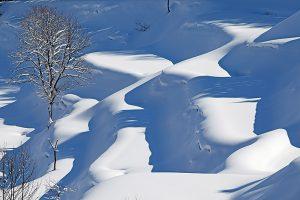 豪雪と大地の恵み 新潟・十日町フェア