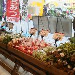 「旬」を楽しむ夏休み!~小学生向け「和食」と「夏野菜」のワークショップもあるよ~