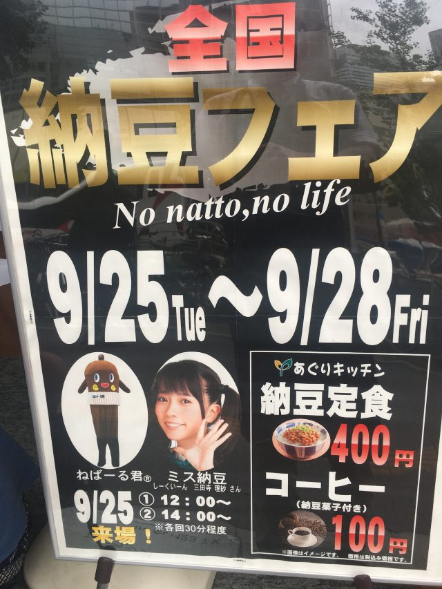 Poster of Natto Fes