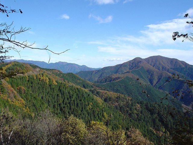 新宿で西多摩の自然をまるごと体験!『東京の森林(やま)からの贈りもの』