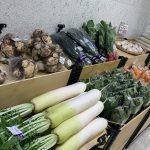 臨時営業(野菜販売)