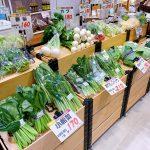 東京野菜フェア【アグリマイスター】